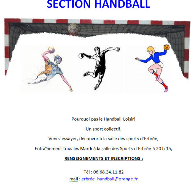 Section Handball
